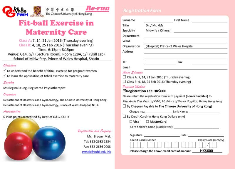 2016.02.04 Fit-ball Exercise in Maternity Care