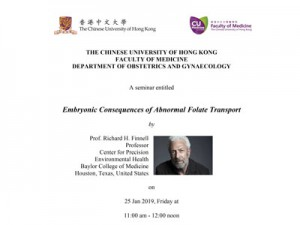 Embryonic Consequences of Abnormal Folate Transport @ Allan Chang Seminar Room, 1E O&G Department